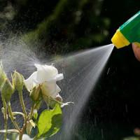 Produits de jardin et terreaux